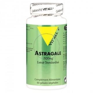 astragale-500-mg-60-capsules-vitall_3698-1